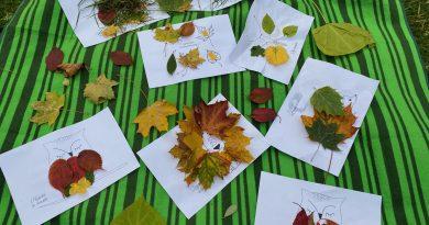 Podzimní listí v Mini-školce
