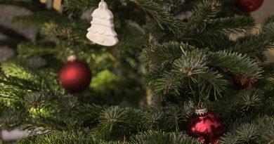 Veselé Vánoce a šťastný nový rok 2021!